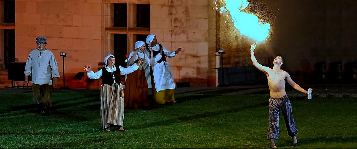 sound and light show at Chateau of Amboise