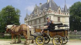 horse carriage near Chateau of Azay-le-Rideau