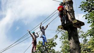 zip lining tree top adventures